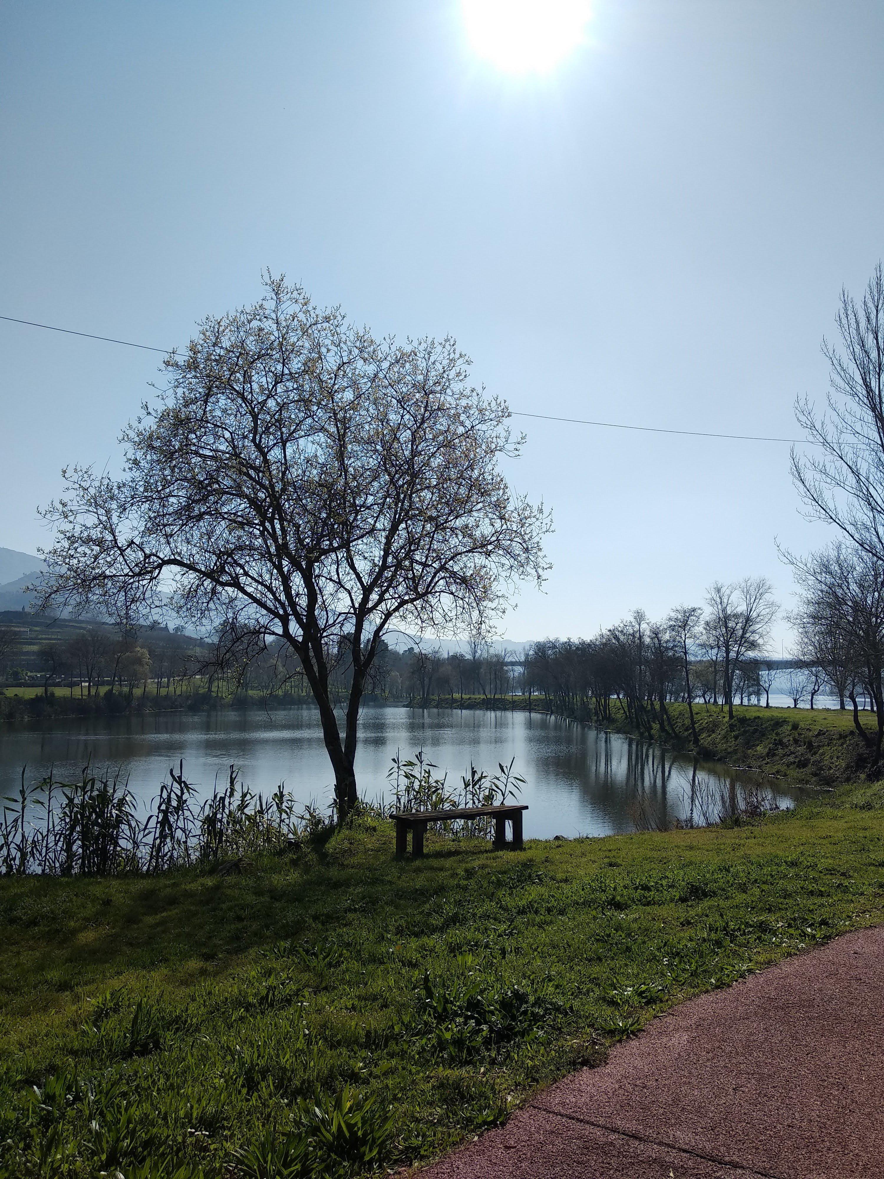 Margens do Rio Minho junto à praia fluvial